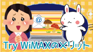 Try WiMAXのメリット