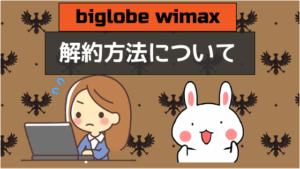 biglobe wimax 解約方法について