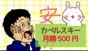 カペルスキー:月額500円