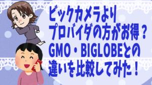 ビックカメラよりプロバイダの方がお得?GMO・BIGLOBEとの違いを比較してみた!